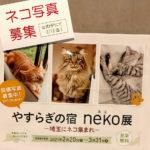 【2月12日まで猫写真募集】ホテルブリランテ武蔵野で『やすらぎの宿neko写真展 ~埼玉にネコ集まれ~』を2021年2月20日(土)より開催